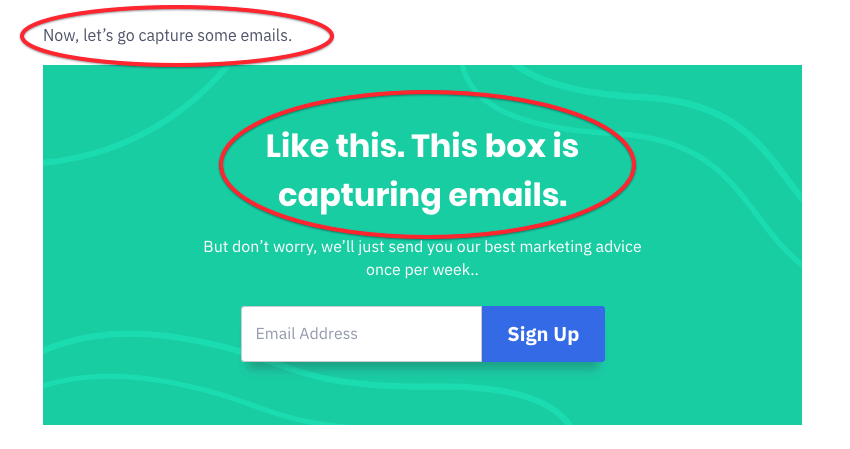 opt-in email capture example